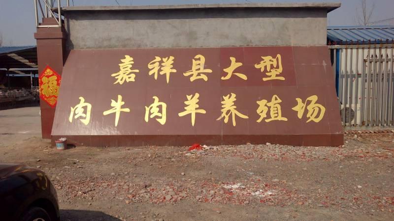 大畜网优质供应商:尚旺