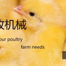 大畜网优质供应商:河南博龙畜牧机械有限公司