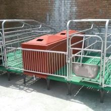 大畜网优质供应商:河南牧丰养殖设备有限公司