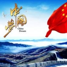 大畜网优质供应商:郑州千裕展览总公司